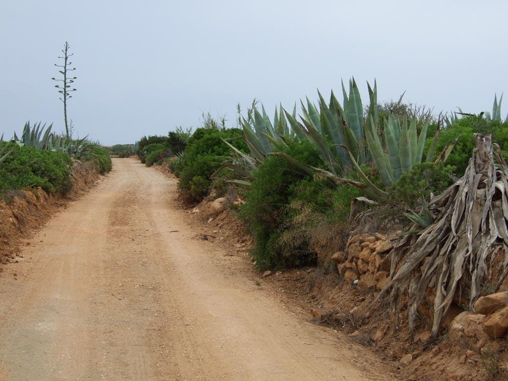 Landschaft Algarve, Portugal