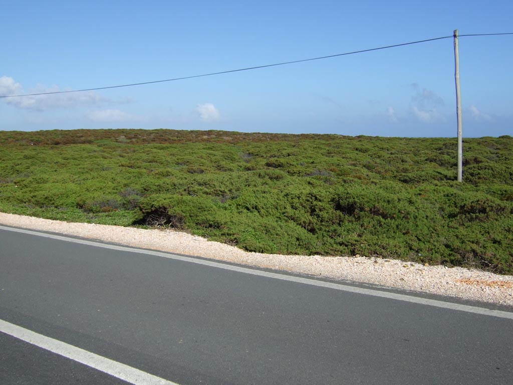 Landschaft Cap st Vincent Algarve, Portugal